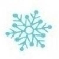 Mini Colher P/ Docinhos - Estampa Cristal de Gelo